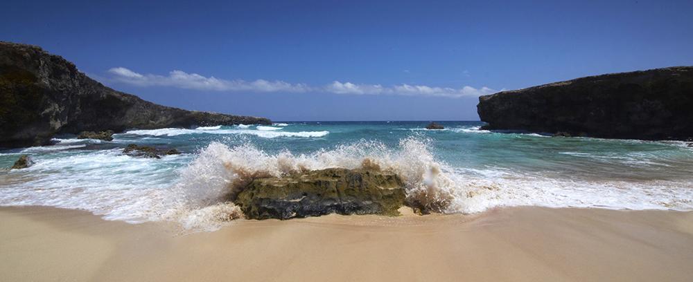 Aruba resorts and hotels  - 3
