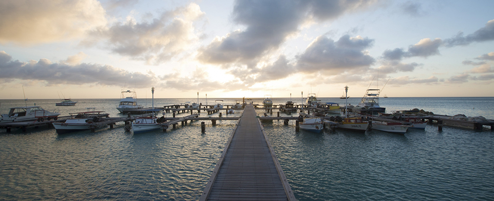 Aruba resorts and hotels  - 4